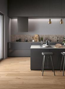 225839_inspirations-carrelage-cuisine-imitation-parquet-ceramique-chene-look-moderne-noir-schelfhout.jpg
